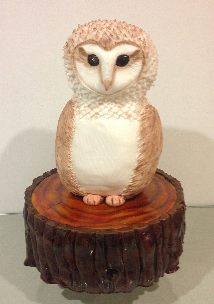 Dolce Lusso Cakes 3d owl birthday celebration cake