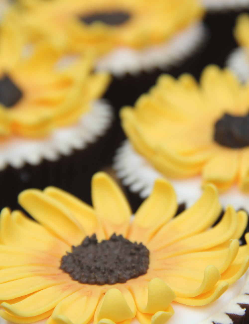Dolce Lusso Cakes sunflower cupcakes birthday celebration cake